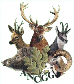 Association Nationale des Chasseurs de Grand Gibier (ANCGG)